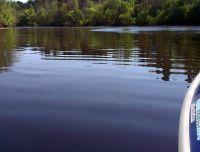Reiu jõgi